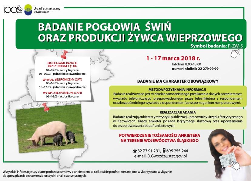 badanie_podgowia_wi_oraz_produkcji_ywca_wieprzowego
