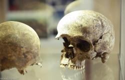 Od rondla do muzeum, czyli pietrowickie spotkania z archeologią