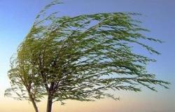 Ostrzeżenie meteorologiczne nr.20 - silny wiatr